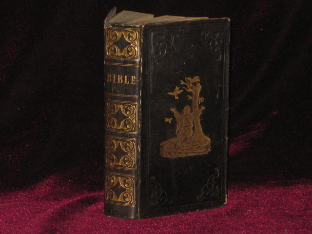 THE ENGLISH VERSION OF THE POLYGLOTT BIBLE, Containing the Old and New Testaments; with the Marginal Readings. Bible, L. Johnson.