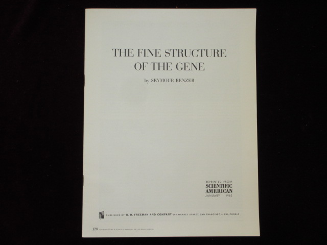 THE FINE STRUCTURE OF THE GENE. Seymour BENZER.