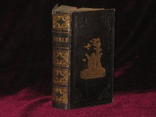 THE ENGLISH VERSION OF THE POLYGLOTT BIBLE, Containing the Old and New Testaments; with the...