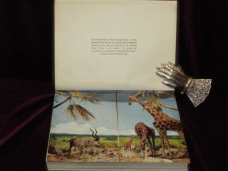 Rowland Ward's Records of Big Game. XIth Edition (Africa) Zebra Skin Binding.