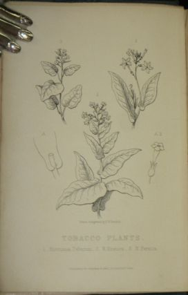 Tobacco: Its History and Associations: Including an Account of the Plant and Its Manufacture; with Its Modes of Use in All Ages and Countries.