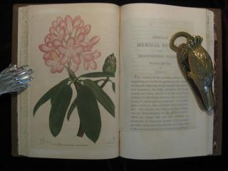 American Medical Botany, Being a Collection of the Native Medicinal Plants of the United States